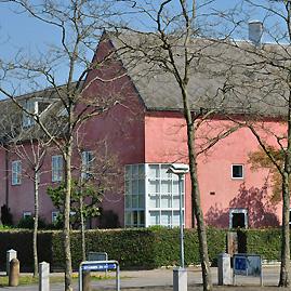 Det lyserøde hus